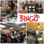 bingo 2017. 2.JPEG